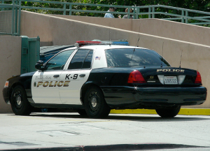 Police Car, Beverly Hills